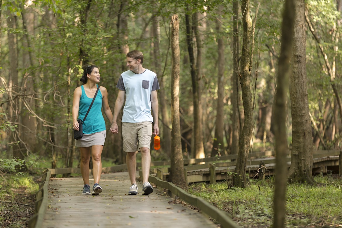 A couple enjoys a walk at Congaree National Park - boardwalk, congaree, explore, family, hike, national park, nps, park, swamp, tourism, travel